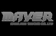 logo_ltr